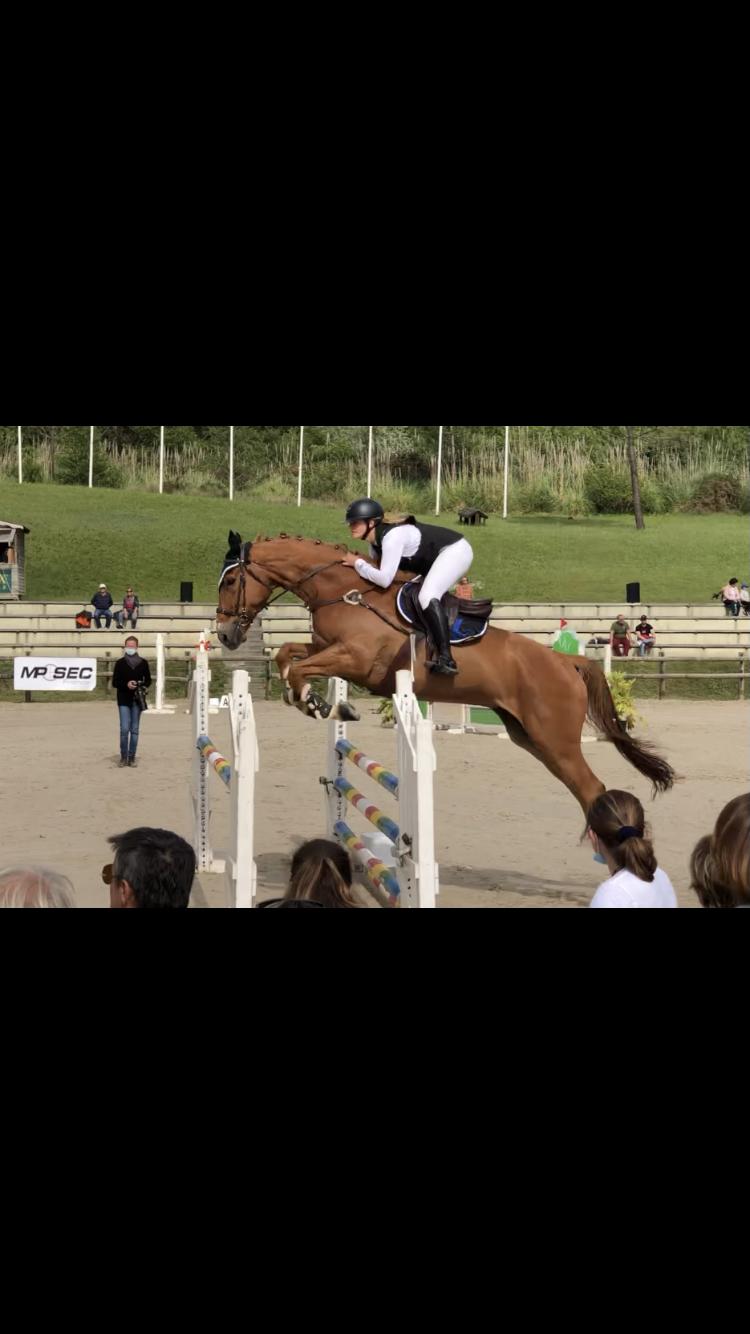 chloe cheval
